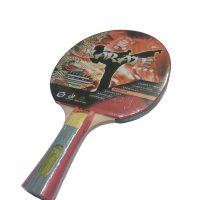 racchetta ping pong karate